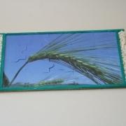 Getreide-Puzzle